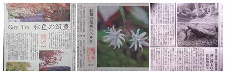 2020年10月31日西日本新聞PA310008_collage.jpg