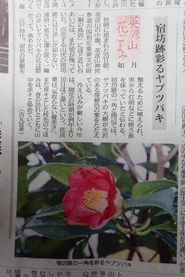 つばきP22800042018-2-28西日本新聞.JPG