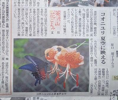コオニユリP7170002-thumbnail2[1].jpg