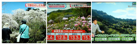 2020年4月2日FBSテレビP4020006_collage.jpg